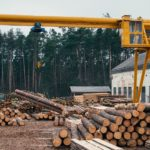 Buying Lumber from a Sawmill to Save Money: The Ultimate Guide